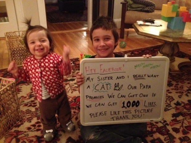 Kids use Facebook to plea for a cat from their father