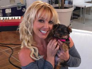 Britney Spears with her puppy 'Hannah'