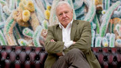 Broadcaster David Attenborough chats to Digital Spy about his new wildlife documentary series Galapagos 3D