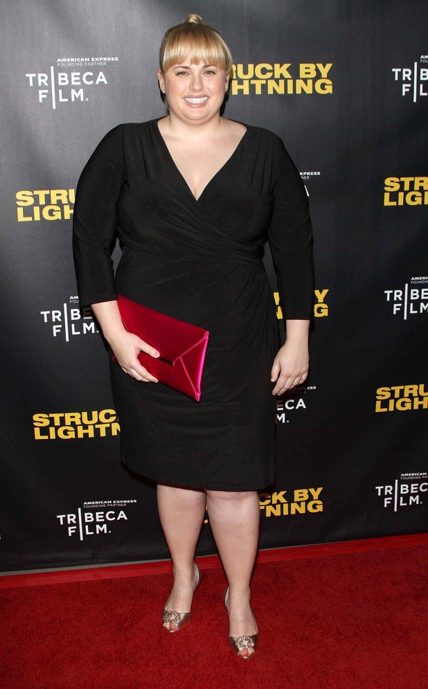 Rebel Wilson, Struck By Lightning
