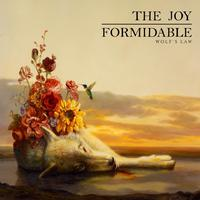 The Joy Formidable: 'Wolf's Law' cover artwork