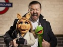 Derek star shares the screen with Kermit and co for sequel The Muppets...Again!