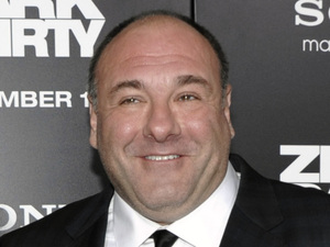 &#39;Zero Dark Thirty&#39; premiere: James Gandolfini and his wife Deborah Lin
