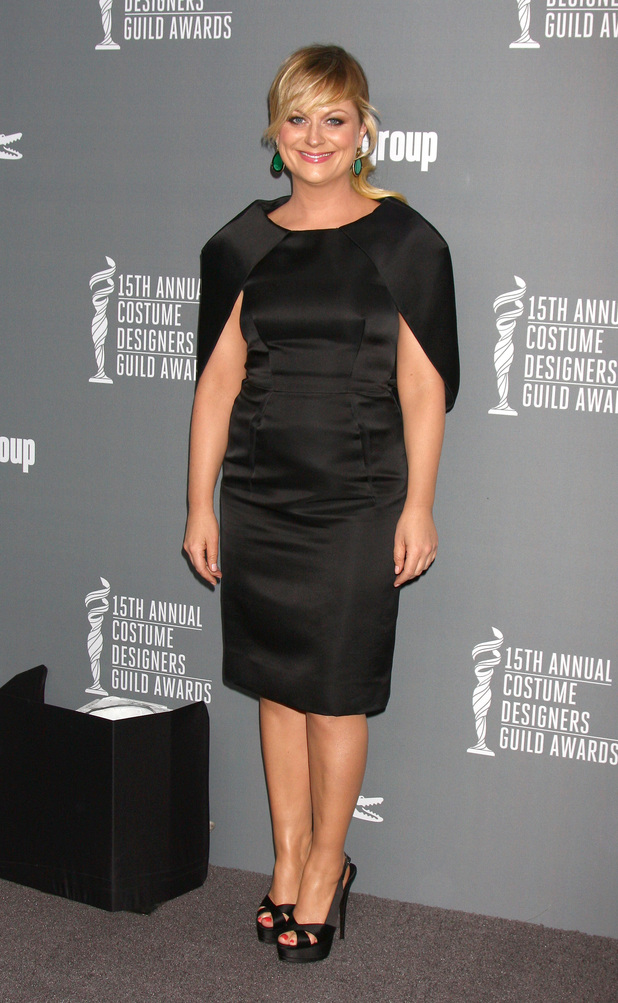 Amy Poehler, 15th Annual Costume Designers Guild Awards