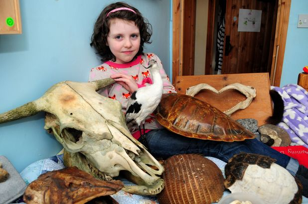 Girl who discovered new species of dinosaur has it named after her