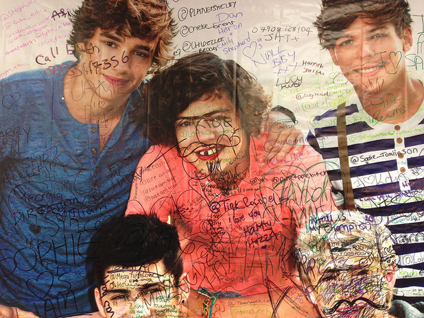One Direction portrait