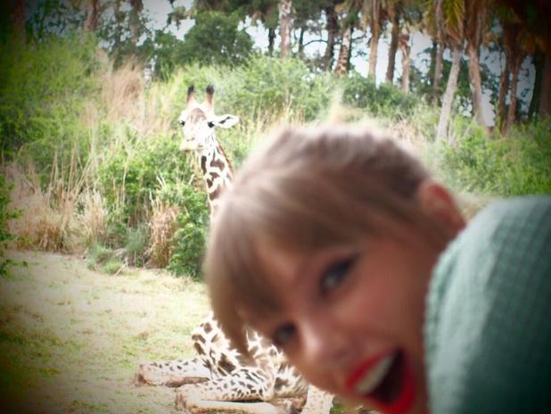 Taylor Swift poses with a giraffe at Disney World's Animal Kingdom
