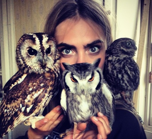 Cara Delevingne poses with owls