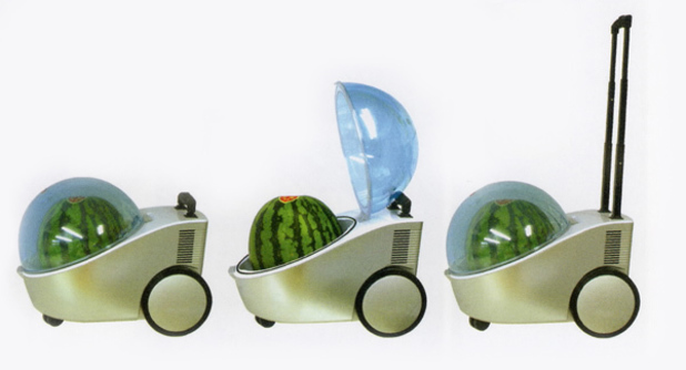 The Watermelon Buggy