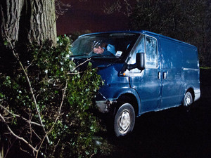 Cameron crashes his van