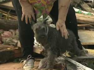 Oklahoma tornado survivor finds her dog