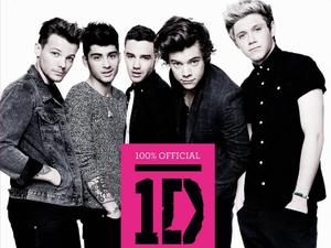 One Direction - '100% Official 1D' book