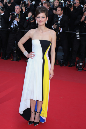 Marion Cotillard, Blood Ties, 'Blood Ties' film premiere, 66th Cannes Film Festival