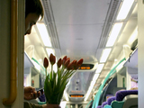 Romance on a train