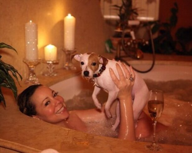 Mariah Carey, bath, dog, Valentine's Day, twitter, champagne