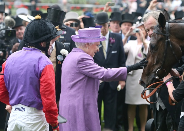 Queen Elizabeth II with her horse Estimate at Royal Ascot ~~~ June 20, 2013