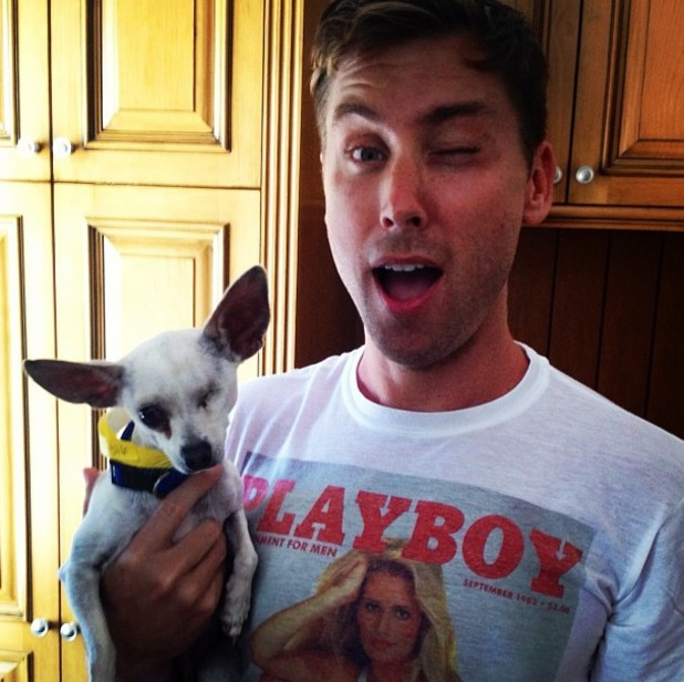 Lance Bass urges his fans to adopt a one-eyed puppy called Buddy