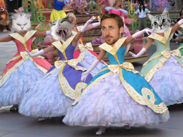 Ryan Gosling Disneyland Cats meme