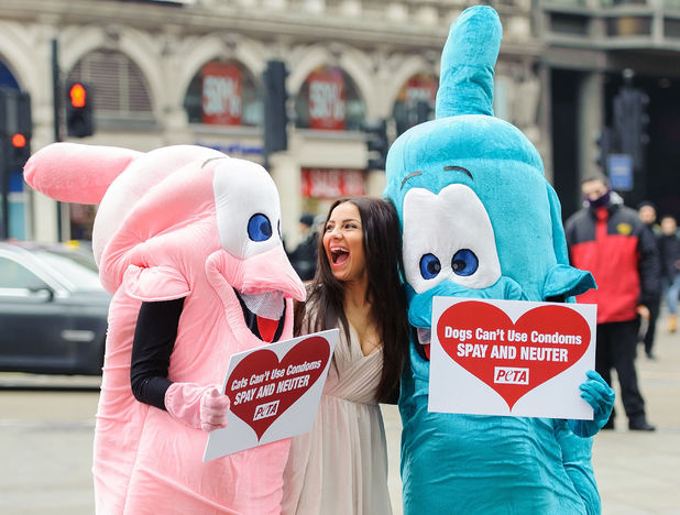 Celebrity Big Brother contestant Lacey Banghard at a photocall in Piccadilly Circus, London, to promote PETA's (People for the Ethical Treatment of Animals) campaign to sterilise cats and dogs to avoid unnecessary animal suffering.