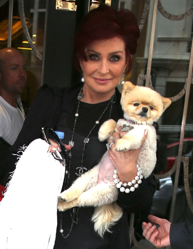 Sharon Osbourne and her dog leaving Claridges