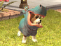PlayStation Vita Pets gets release date