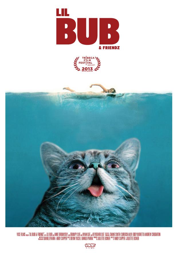 'Lil Bub & Friendz' film poster