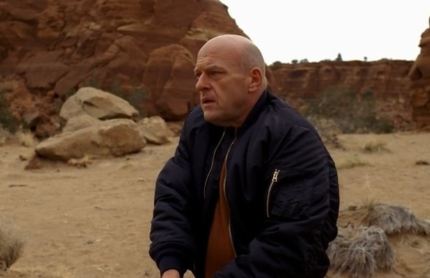 'Breaking Bad': Hank (Dean Norris) in 'To'hajiilee'