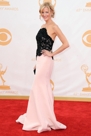 2013 Primetime Emmy Awards: Anna Gunn