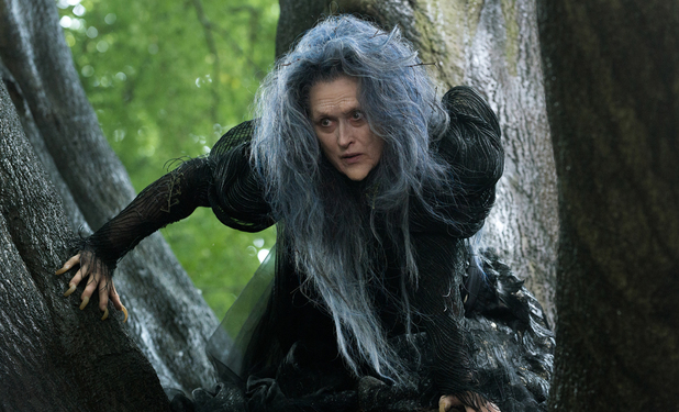 Meryl Streep as the Witch in 'Into the Woods'