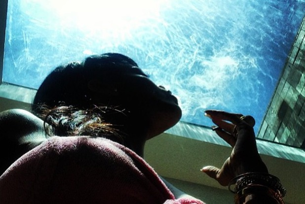 Rihanna's skylight