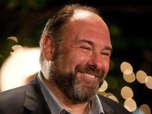 'Enough Said' starring James Gandolfini