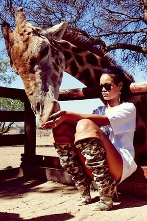 Rihanna feeds a giraffe