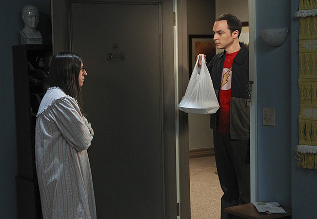 'The Big Bang Theory': 'The Workplace Proximity' - Sheldon and Amy