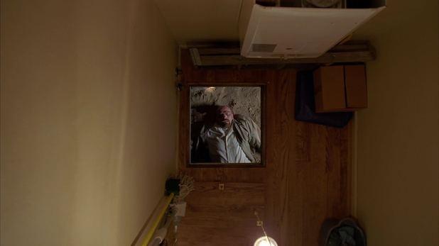 Walt (Bryan Cranston)