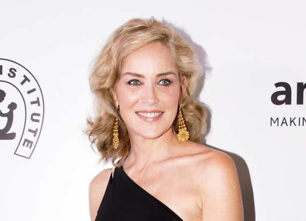Sharon Stone tv series