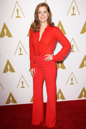 Amy Adams, 86th Annual Academy Awards Nominee Luncheon, Los Angeles, America - 10 Feb 2014