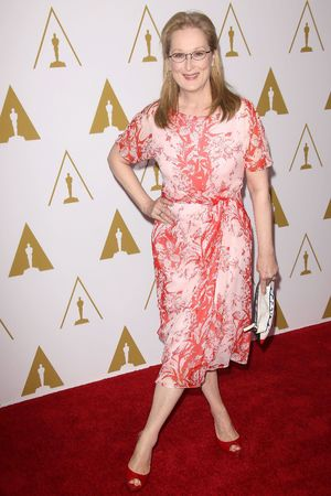 Meryl Streep 86th Annual Academy Awards Nominee Luncheon, Los Angeles, America - 10 Feb 2014