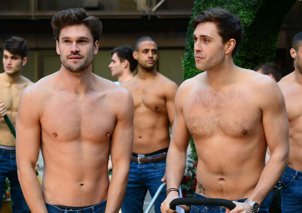 Topless male gardeners in photocall to celebrate 20 years of the Diet Coke break, London, Britain - 13 Feb 2014 Diet Coke hunks as topless labourers 13 Feb 2014