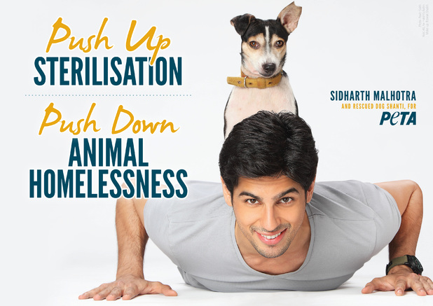 Sidharth Malhotra in Peta India ad