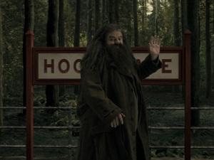 Hagrid at Universal Studios