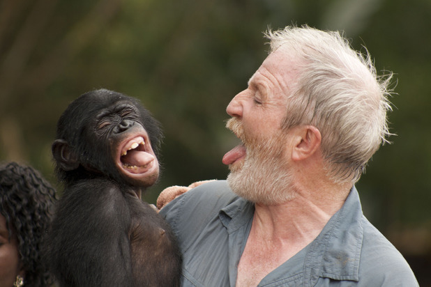 Dr George McGavin with a bonobo infant on Monkey Planet