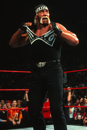 Hollywood Hulk Hogan in the nWo