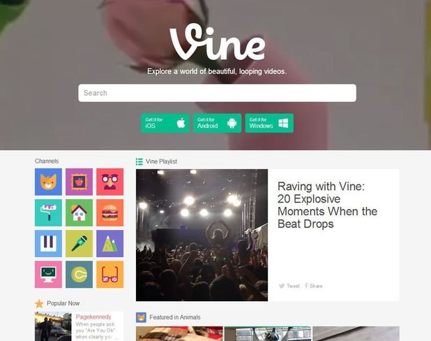A screenshot of the new Vine website