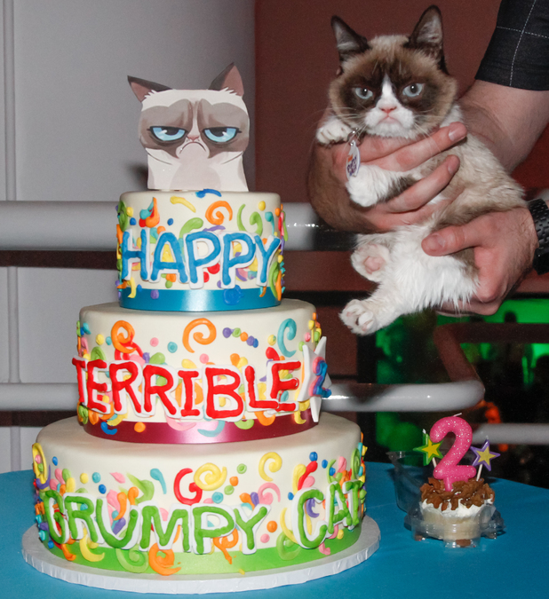 Grumpy Cat's 2nd birthday