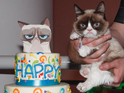 Despite cake and fans in attendance, Grumpy Cat appeared unmoved by celebrations.