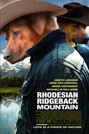 Dogs make movie posters better: Brokeback Mountain