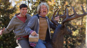 Watch the trailer for Dumb and Dumber To.