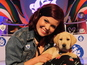 Blue Peter introduces new guide dog Iggy