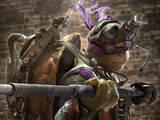 Teenage Mutant Ninja Turtles character poster - Donatello
