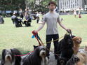 Here's Daniel Radcliffe as you've rarely seen him: looking manly and surrounded by dogs.